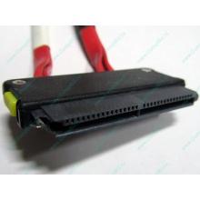 SATA-кабель для корзины HDD HP 451782-001 459190-001 для HP ML310 G5 (Екатеринбург)